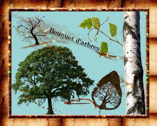 PPS Bouquet d'arbres. Lovani dans PPS bouquet-d-arbres